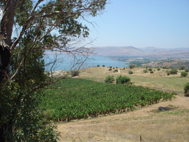 12 View from Mt of Beatitudes