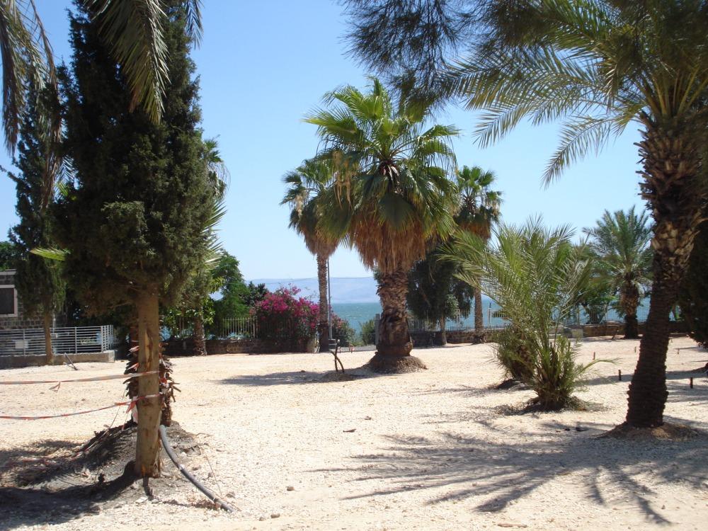 19 Capernaum 3
